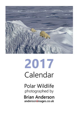 2017calendar_page_01small