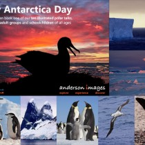 Happy Antarctic Day