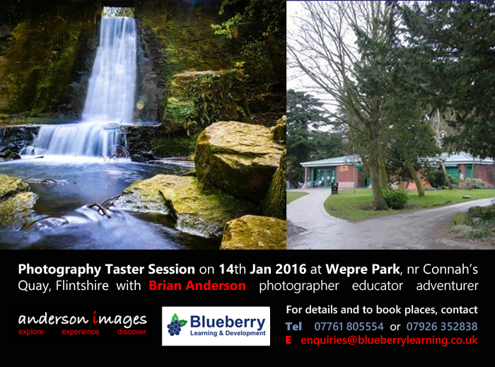 Photography In Wepre Park from Jan 2016