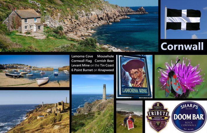 A Few Cornish Delights